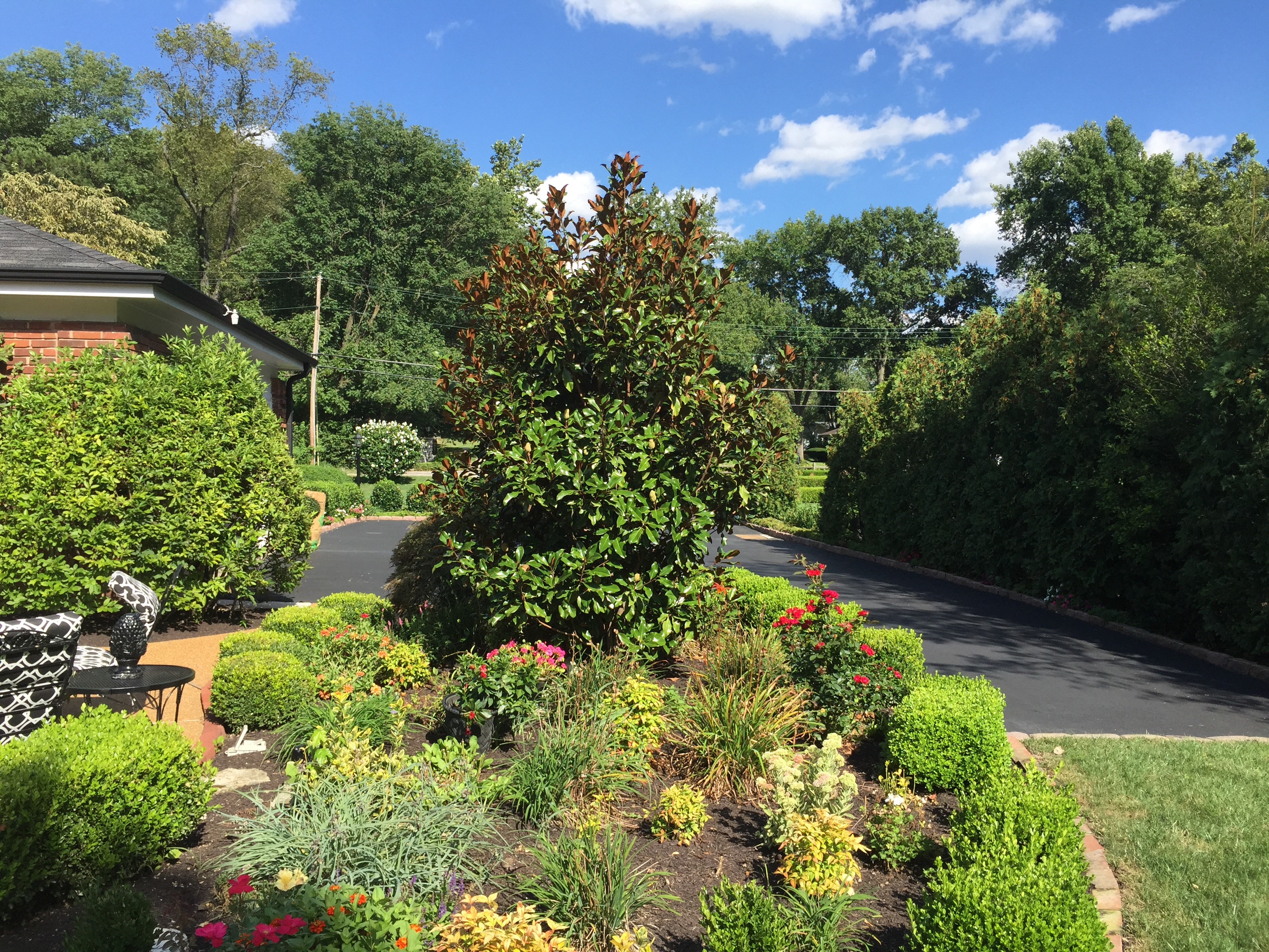 Garden and Paved Driveway