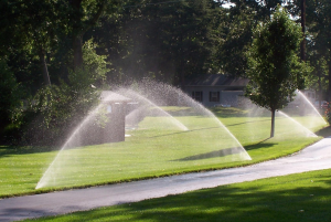 Professional Irrigation in St. Louis
