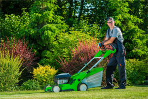 Residential Landscape Services in St. Louis, MO